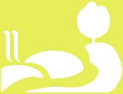 Logo RUIDERAe